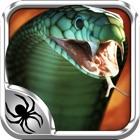 毒蛇杀手 icon