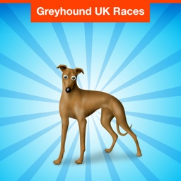 Greyhound UK Races