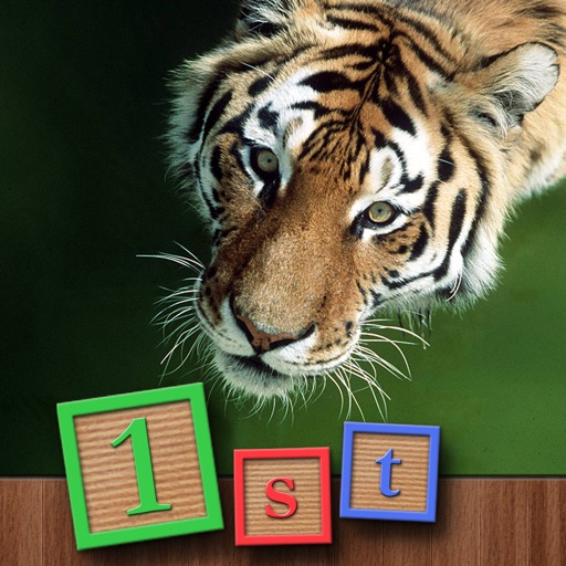 1st GAMES - Wild animals discovery around the world HD puzzle for