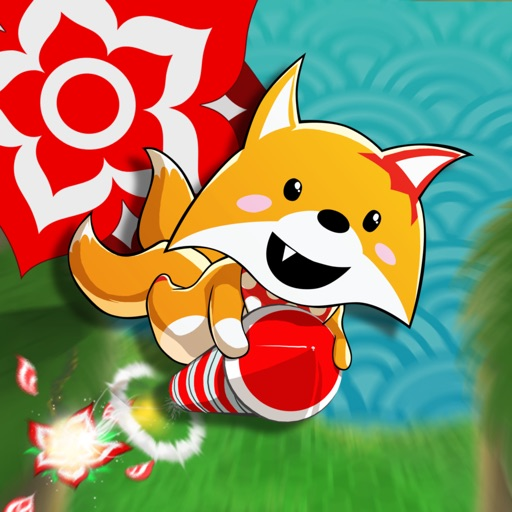 Rocket Fox Review
