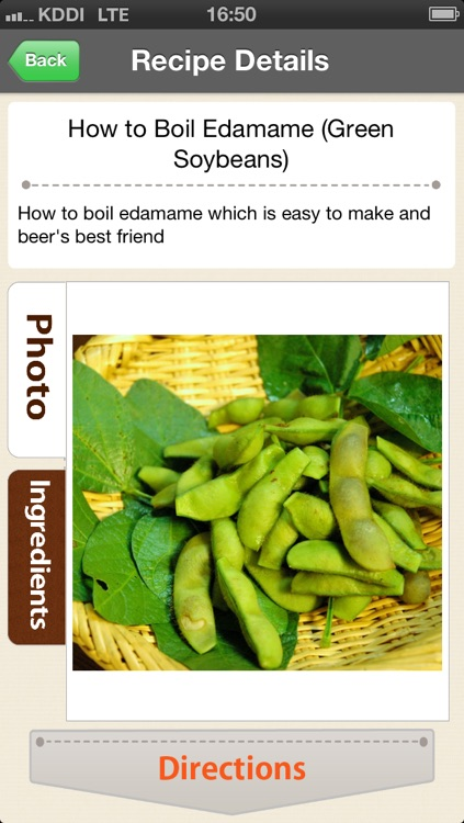 Basic Japanese Recipes - washoku 55 screenshot-0