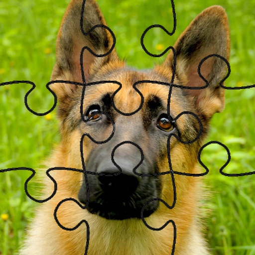 Dog Puzzles!