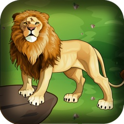African Lion Safari Hunter
