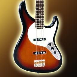 Bass Guitar •