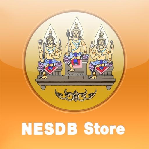 NESDB-Store