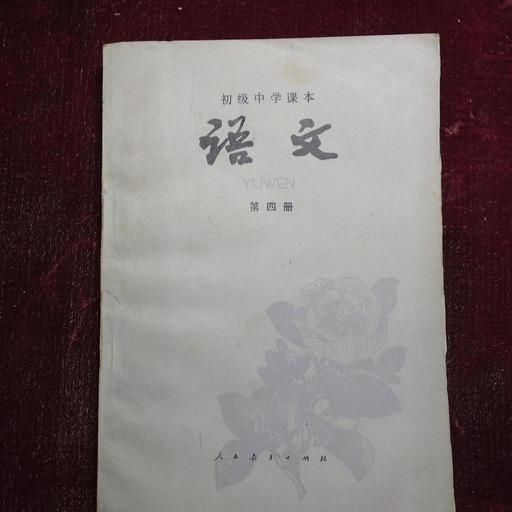 中考语文必备资料大全