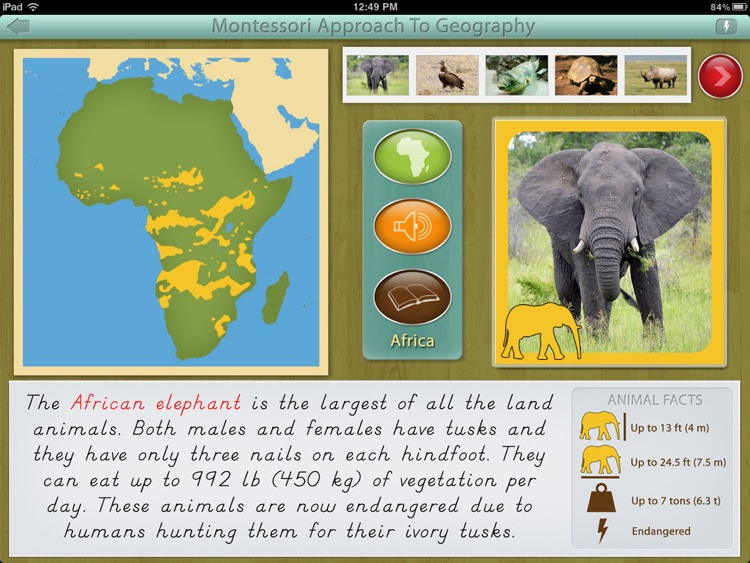 Animals of Africa LITE - A Montessori Approach To Geography
