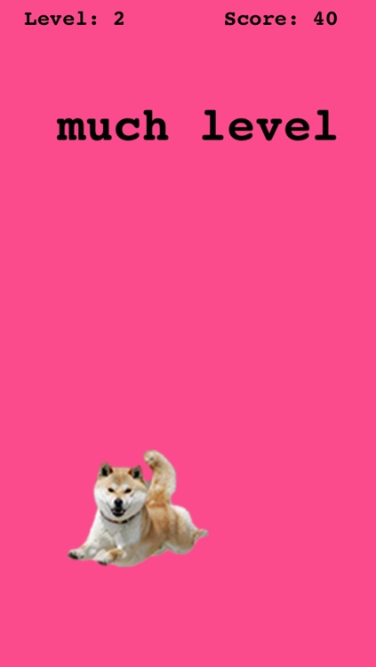 doge game screenshot-1