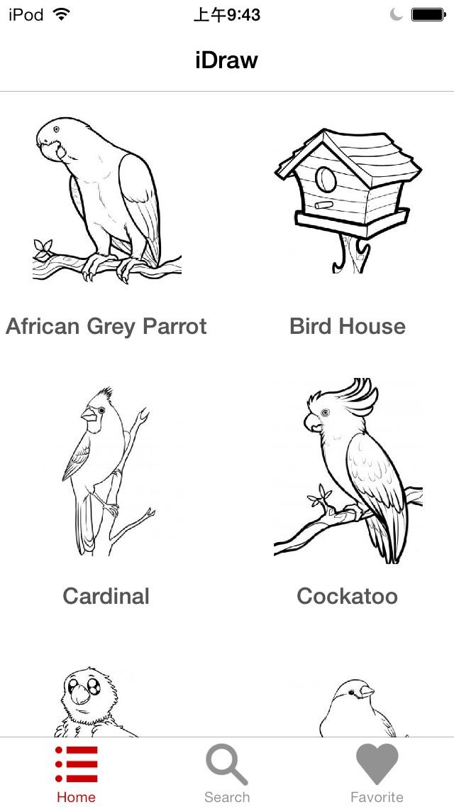 How to draw birds - FREE