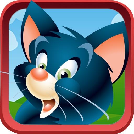 Kitty Cat Match - Connect Three Animal Puzzle Fun iOS App