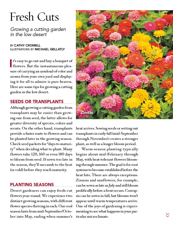 Phoenix Home & Garden 2015 Garden Guide screenshot-2