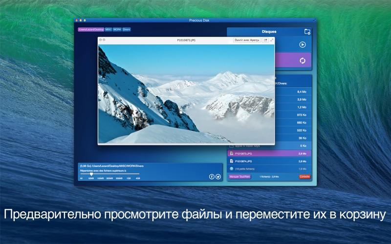 Precious Disk скриншот программы 3