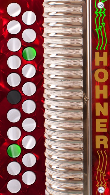 Hohner-B/C Mini Button Accordion