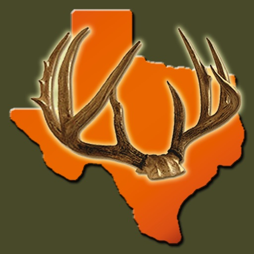 Texas Deer Hunting Guide