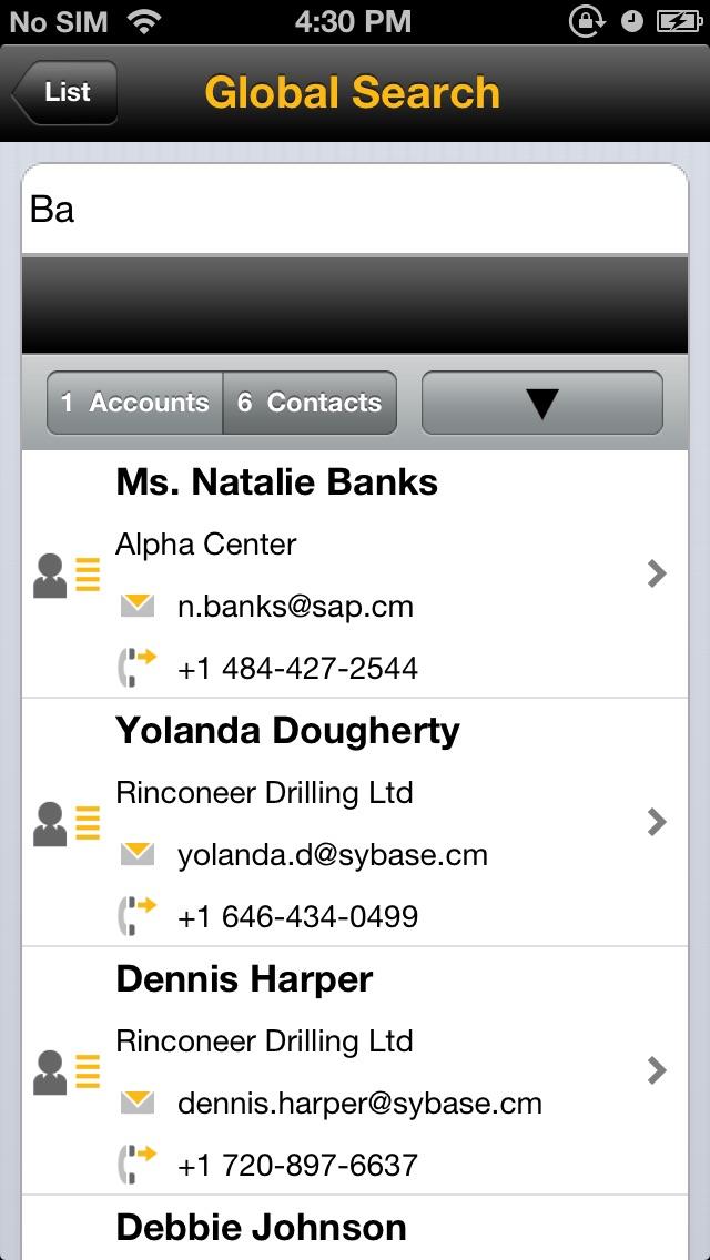 SAP Sales Managerのスクリーンショット2