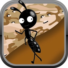 Activities of Ant Farm Escape to Bug Village