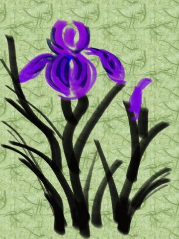 https://is5-ssl.mzstatic.com/image/thumb/Purple4/v4/b5/ed/cd/b5edcd60-ede4-8625-d4ad-475a7ed46e90/mzl.wnobfavr.jpg/360x480bb.jpg