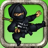 Codes for Ninja Shuriken Boy vs Samurai Block World Game Hack