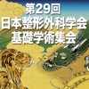 第29回日本整形外科学会基礎学術集会