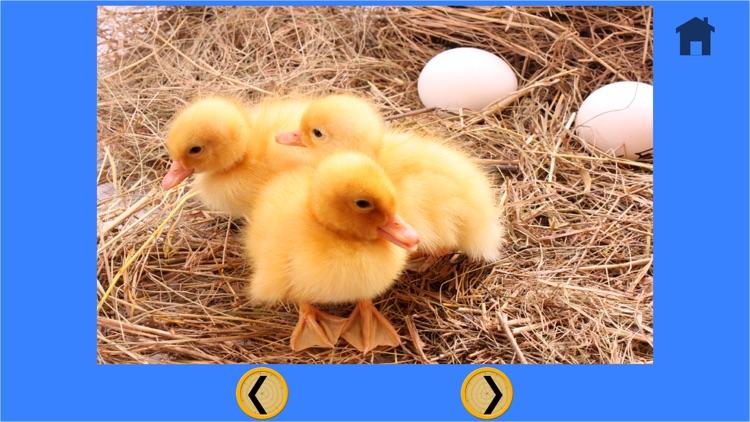 funny farm animals for kids - free game screenshot-4