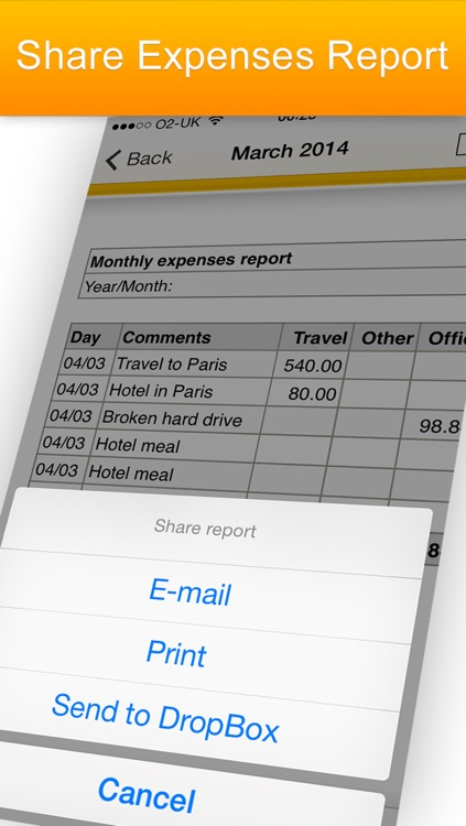 iExpenses - business travel expenses