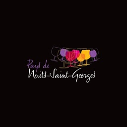 HOLIDAYS IN NUITS-SAINT-GEORGES REGION