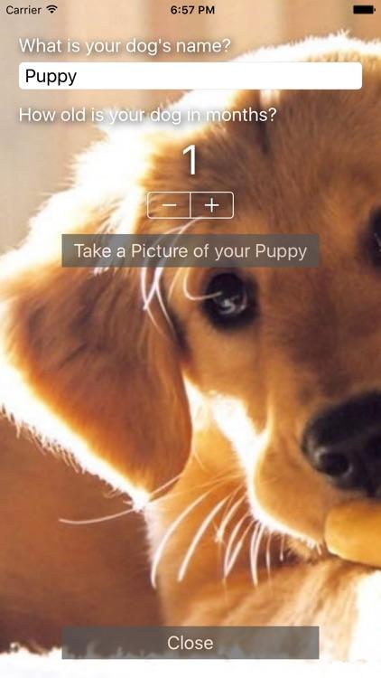 Puddle & Pile - Puppy Toilet Training screenshot-3