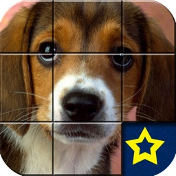 A Cute Puppy Puzzle Games Free
