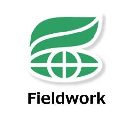 CIAT Fieldwork
