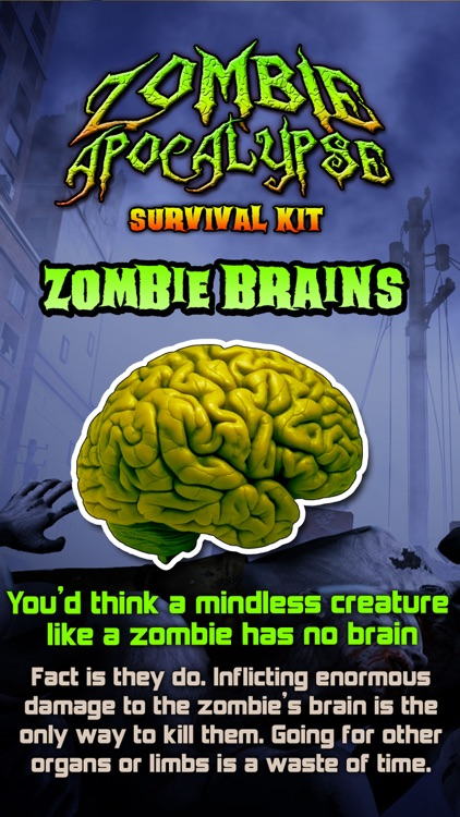 Zombie Apocalypse Survival Kit
