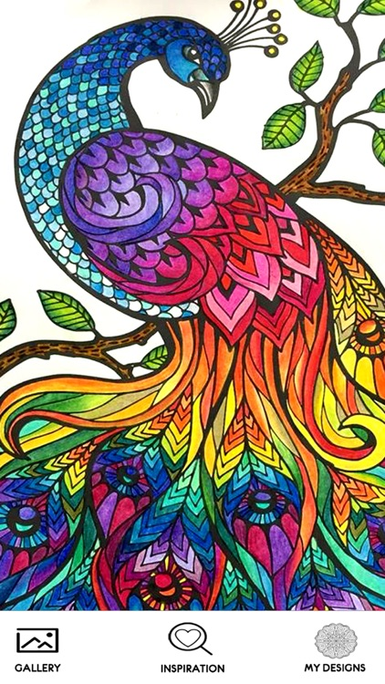Mandala Coloring Book Pages for Adult - Patterns Coloring Therapy Stress Reliever