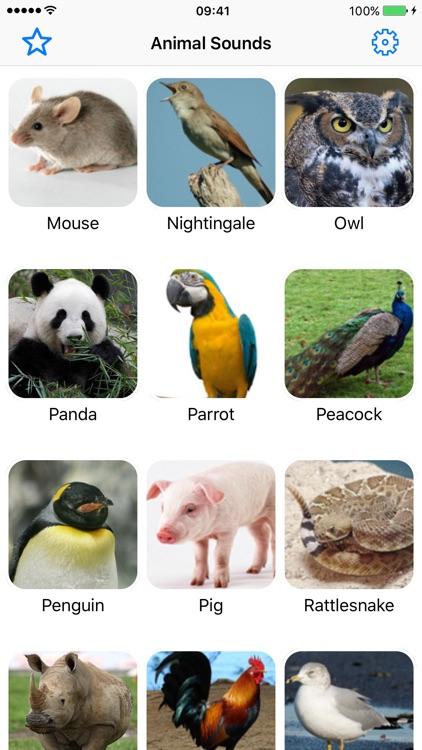 Animal Sounds Pro - Nature Voice Effects Simulator app image