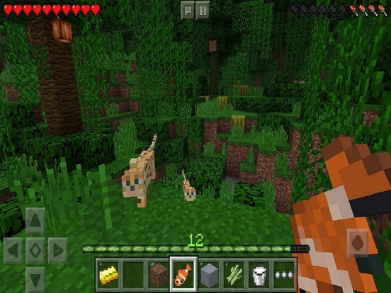 Image of Minecraft for iPad