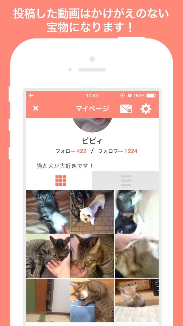 犬や猫の動画がいっぱい!動画編集も簡単!〜PiVid〜紹介画像4