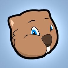 Activities of Epic Wombat