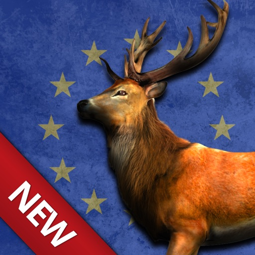Bow Hunting Europe: Wild Animals Hunter & Sport Target Shooting
