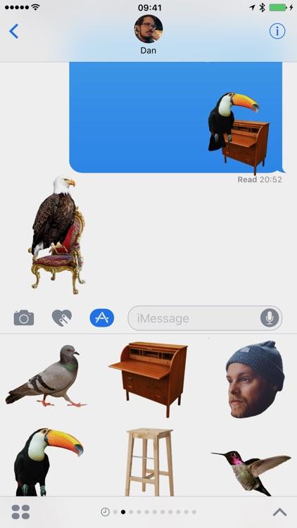 Birds on Furniture