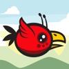 Allien Bird