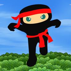 Activities of Ninja Fall Quest