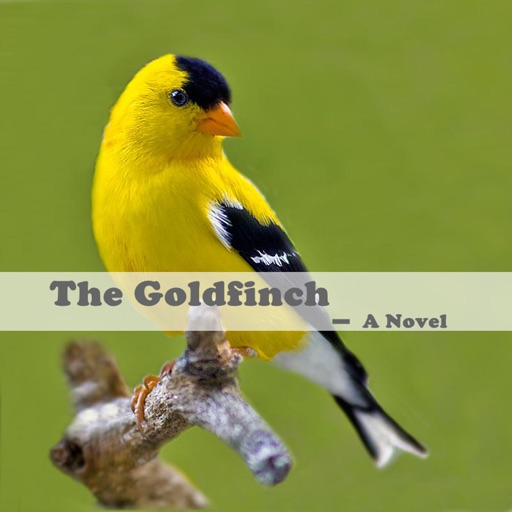 The Goldfinch: Practical Guide Cards with Key Insights and Daily Inspiration