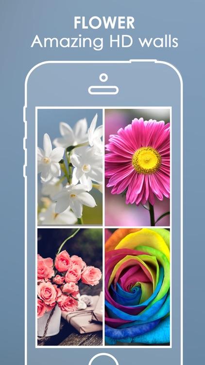 Best Flower Wallpapers | Lovely Rose Backgrounds