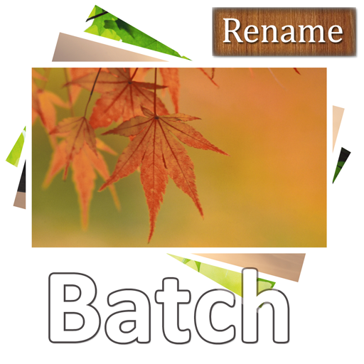 Acc Image Batch Rename