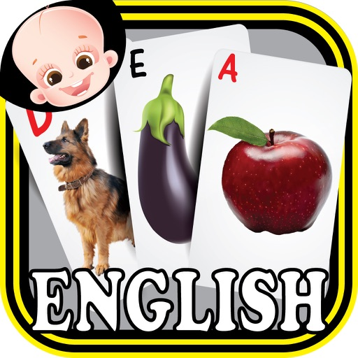 Preschool Kindergarten Kids English ABC Alphabets & Number Flash Cards