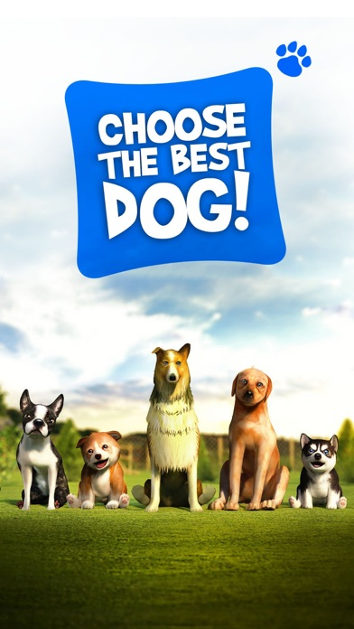 Dog Simulator 2015 screenshot three