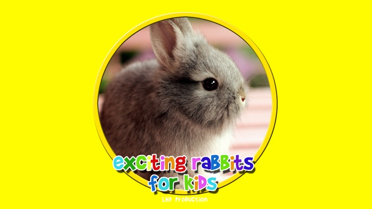exciting rabbits for kids - free screenshot-0