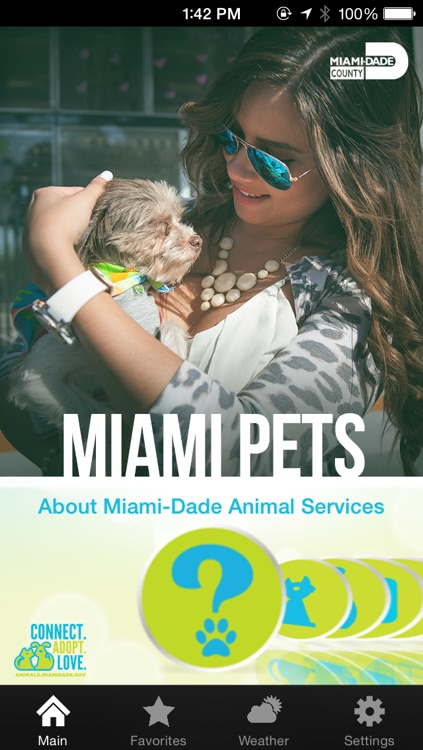 Miami Pets