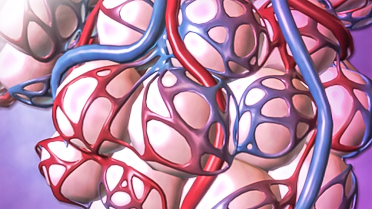 For Organizations - 2016 Physiology Animations