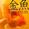 Kingyo 3D