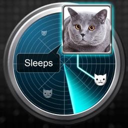 Radar What Makes Cat Joke