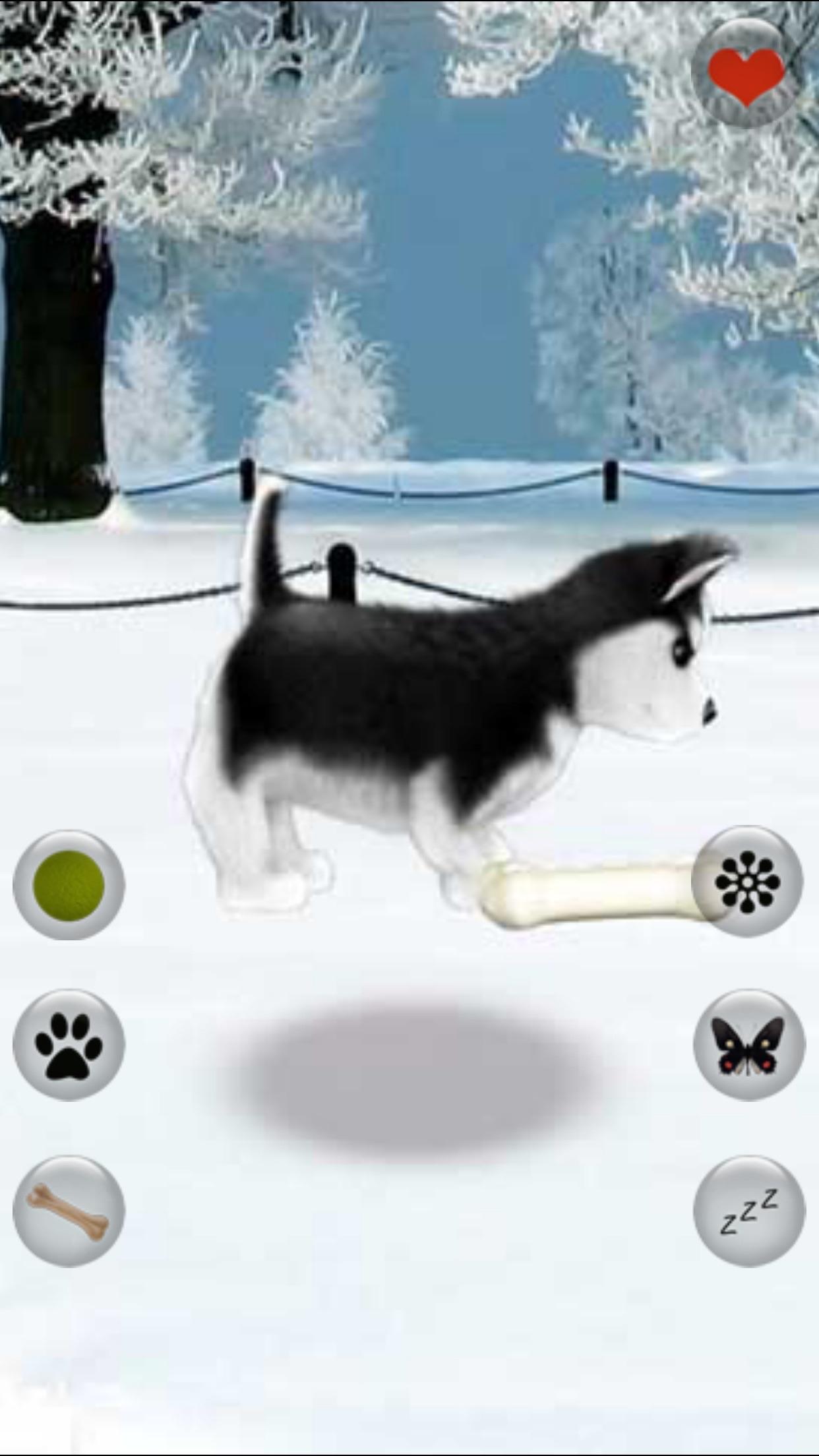 Talking Dog - Virtual Pet Husky Screenshot